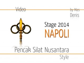 Video Stage Napoli 2014